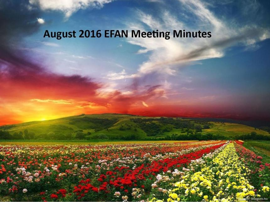 August meeting-minutes-picture