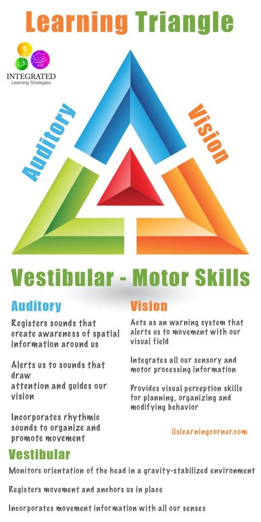 learning-triangle-vestibular-pinterest-512x1024